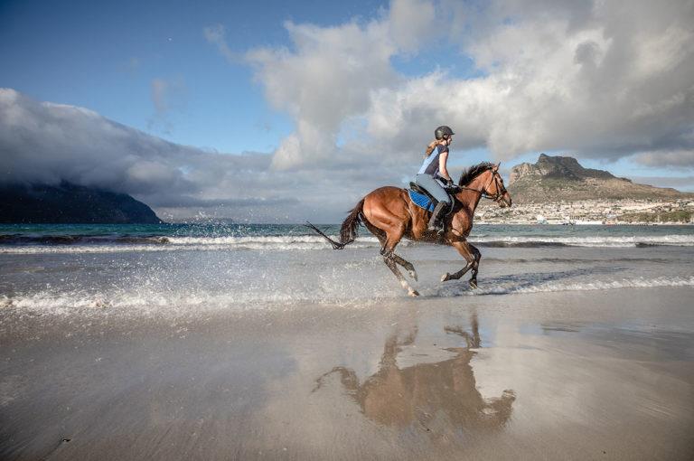 katja photography equestrian