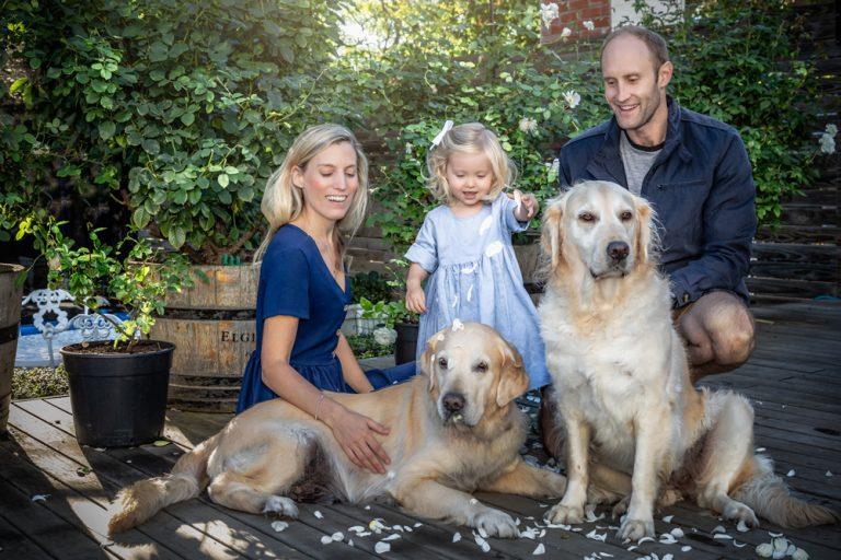 lifestyle portrait of young family and their two golden retrievers by katja photography